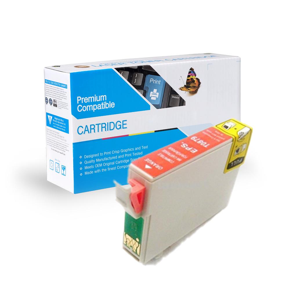 Epson Remanufactured  T087920